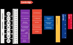 niveles-cambridge